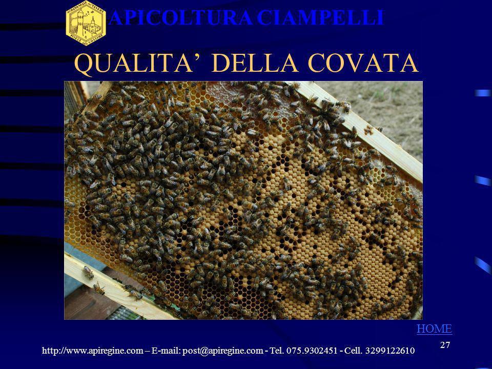 26 QUALITA DELLA COVATA http://www.apiregine.com – E-mail: post@apiregine.com - Tel. 075.9302451 - Cell. 3299122610 APICOLTURA CIAMPELLI HOME