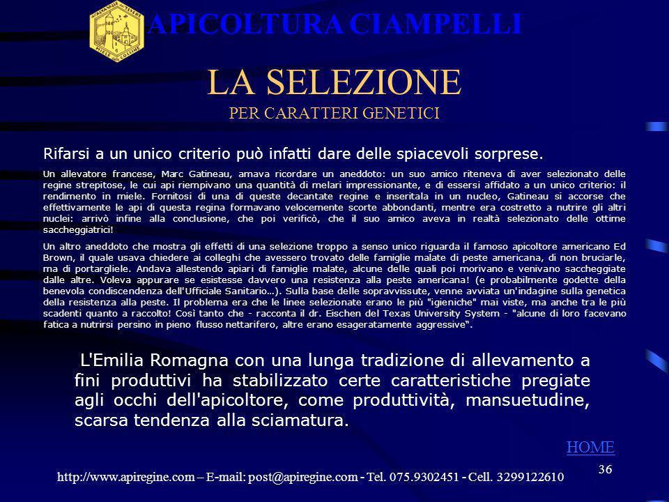35 VALUTAZIONE DEL COMPORTAMENTO IGIENICO http://www.apiregine.com – E-mail: post@apiregine.com - Tel. 075.9302451 - Cell. 3299122610 APICOLTURA CIAMP