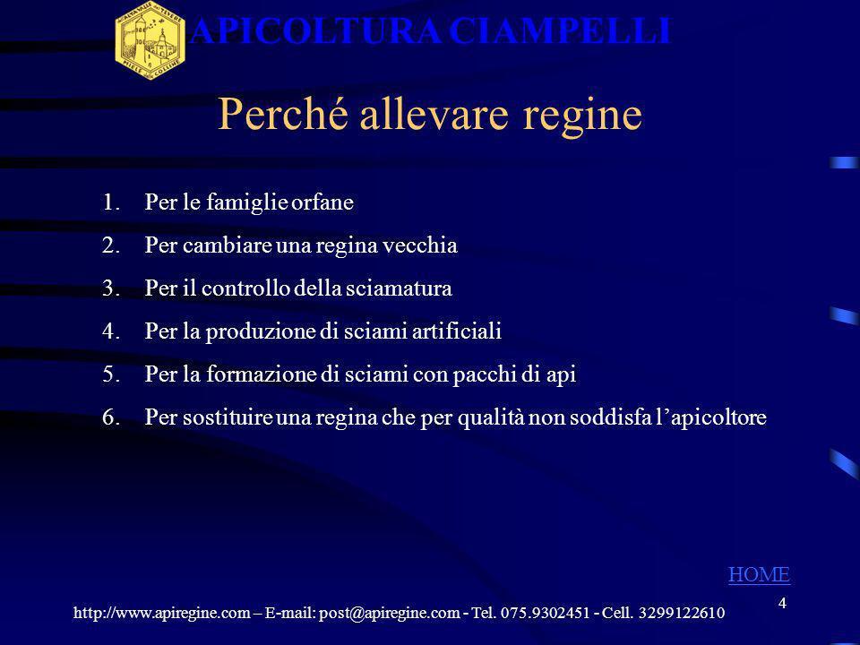 3 UMBRIA Provincia di Perugia Dove siamo http://www.apiregine.com – E-mail: post@apiregine.com - Tel. 075.9302451 - Cell. 3299122610 APICOLTURA CIAMPE