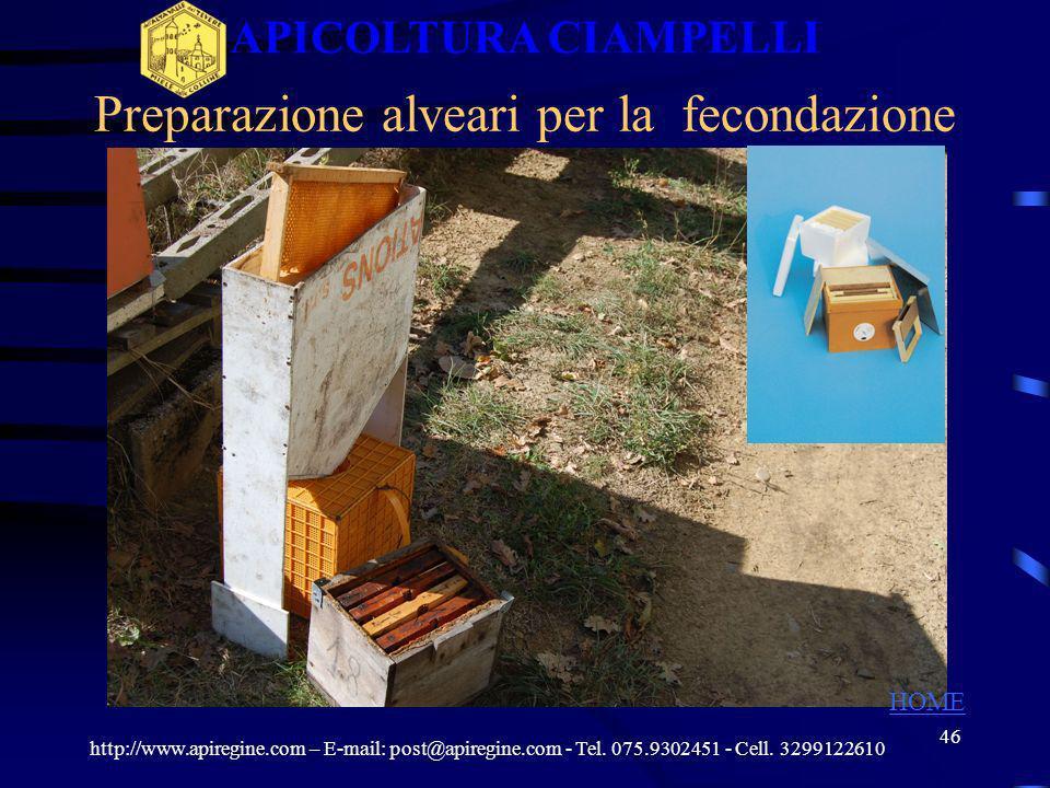 45 Uso dellincubatrice per le celle reali http://www.apiregine.com – E-mail: post@apiregine.com - Tel. 075.9302451 - Cell. 3299122610 APICOLTURA CIAMP