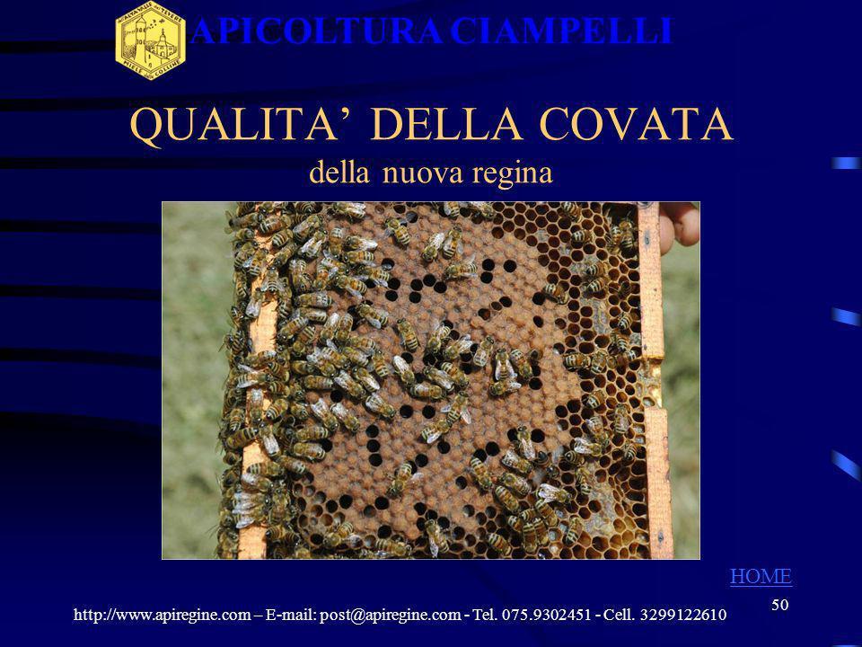 49 Trasferimento celle reali mature in arnia di fecondazione http://www.apiregine.com – E-mail: post@apiregine.com - Tel. 075.9302451 - Cell. 32991226