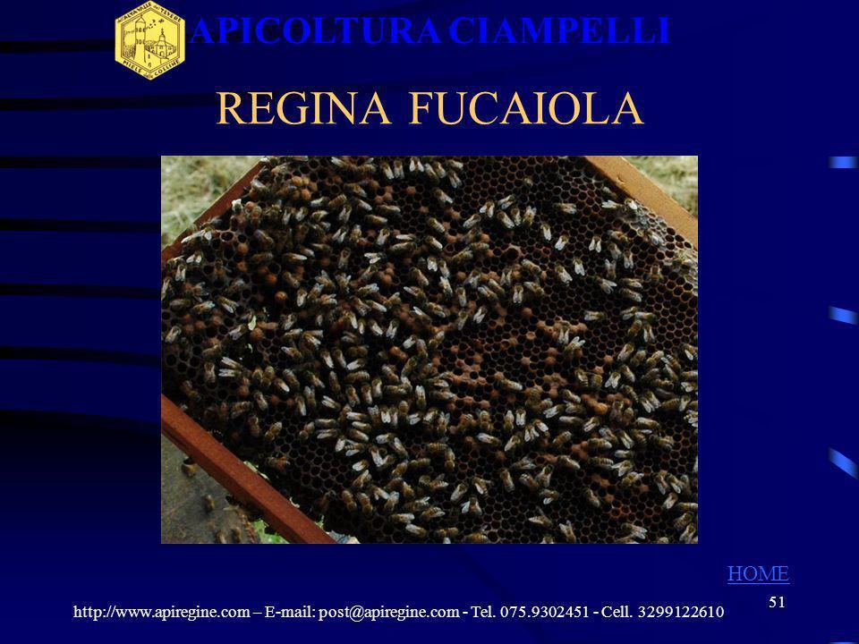 50 QUALITA DELLA COVATA della nuova regina http://www.apiregine.com – E-mail: post@apiregine.com - Tel. 075.9302451 - Cell. 3299122610 APICOLTURA CIAM