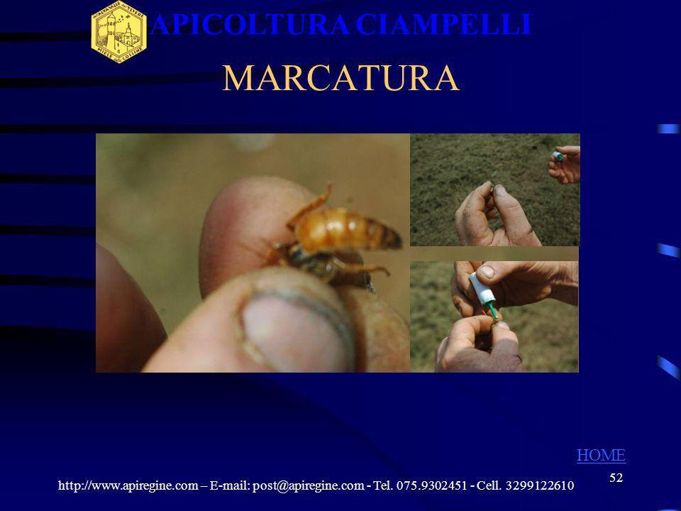 51 REGINA FUCAIOLA http://www.apiregine.com – E-mail: post@apiregine.com - Tel. 075.9302451 - Cell. 3299122610 APICOLTURA CIAMPELLI HOME