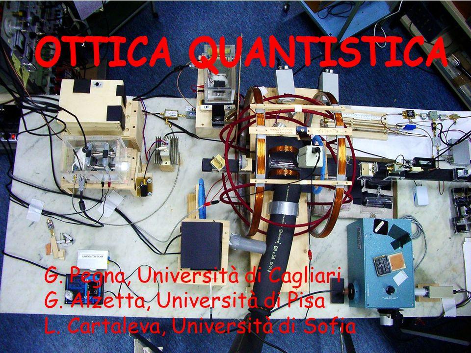 G. Pegna, Università di Cagliari G. Alzetta, Università di Pisa L. Cartaleva, Università di Sofia