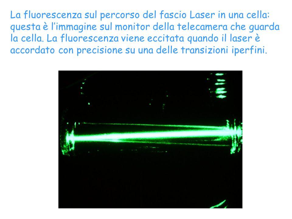 La fluorescenza sul percorso del fascio Laser in una cella: questa è limmagine sul monitor della telecamera che guarda la cella. La fluorescenza viene