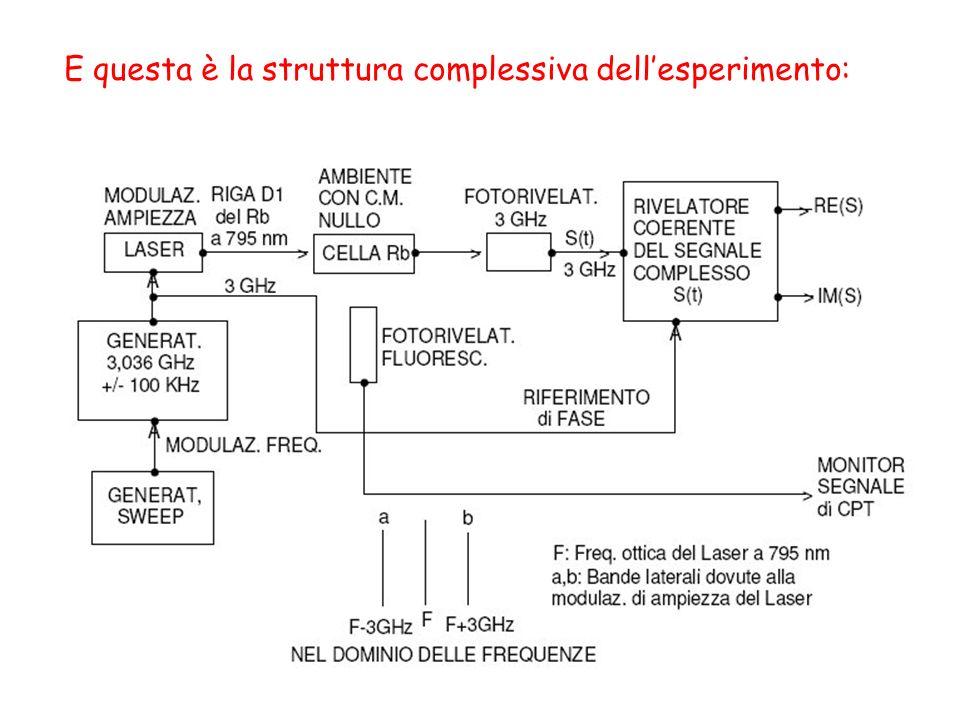 E questa è la struttura complessiva dellesperimento: