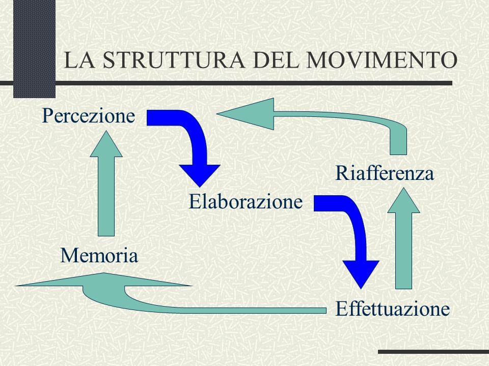 LA STRUTTURA DEL MOVIMENTO Percezione Riafferenza Elaborazione Memoria Effettuazione