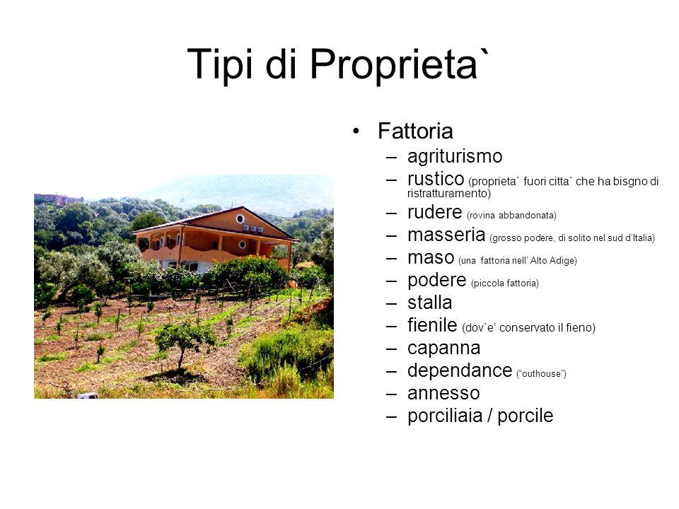 Tipi di Proprieta` Fattoria –agriturismo –rustico (proprieta` fuori citta` che ha bisgno di ristratturamento) –rudere (rovina abbandonata) –masseria (