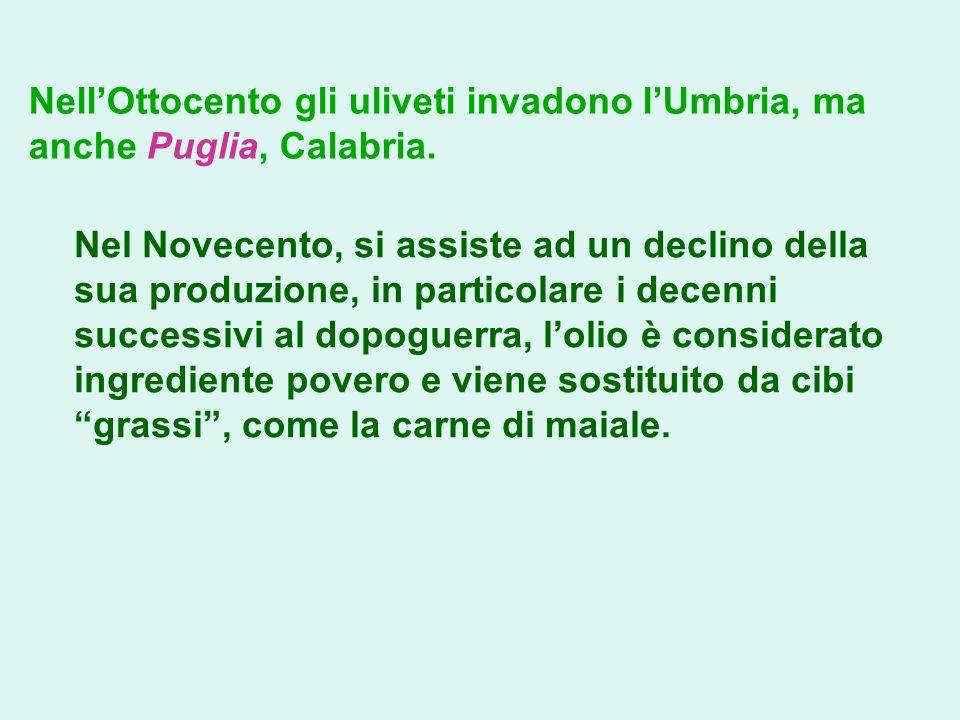NellOttocento gli uliveti invadono lUmbria, ma anche Puglia, Calabria. Nel Novecento, si assiste ad un declino della sua produzione, in particolare i