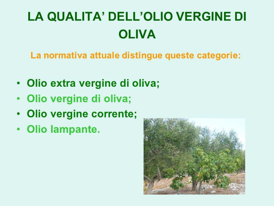 LA QUALITA DELLOLIO VERGINE DI OLIVA La normativa attuale distingue queste categorie: Olio extra vergine di oliva; Olio vergine di oliva; Olio vergine