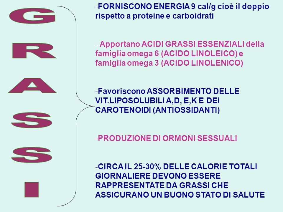 -FORNISCONO ENERGIA 9 cal/g cioè il doppio rispetto a proteine e carboidrati - Apportano ACIDI GRASSI ESSENZIALI della famiglia omega 6 (ACIDO LINOLEI