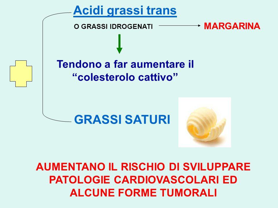 Acidi grassi trans Tendono a far aumentare il colesterolo cattivo O GRASSI IDROGENATI MARGARINA GRASSI SATURI AUMENTANO IL RISCHIO DI SVILUPPARE PATOL