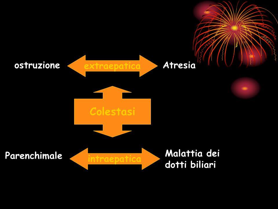 Colestasi extraepatica Atresiaostruzione intraepatica Malattia dei dotti biliari Parenchimale