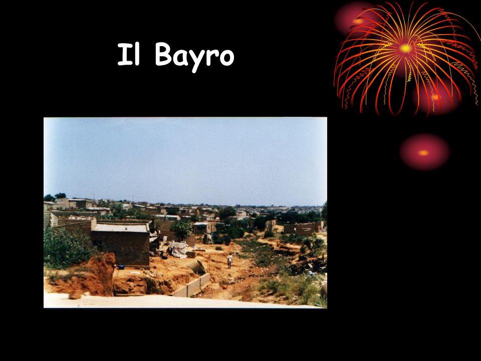 Il Bayro