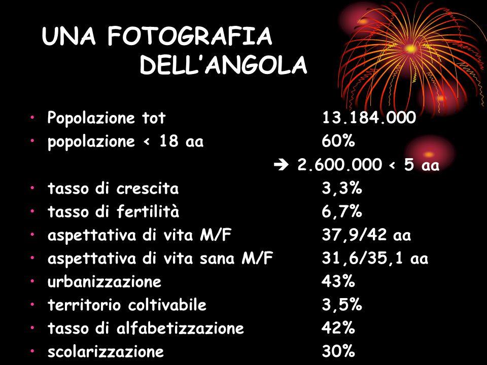 UNA FOTOGRAFIA DELLANGOLA Popolazione tot 13.184.000 popolazione < 18 aa 60% 2.600.000 < 5 aa tasso di crescita 3,3% tasso di fertilità 6,7% aspettati