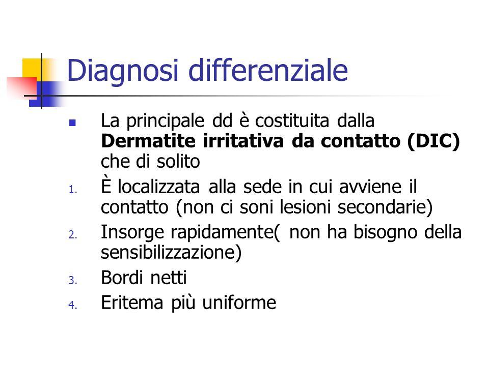 Diagnosi differenziale La principale dd è costituita dalla Dermatite irritativa da contatto (DIC) che di solito 1. È localizzata alla sede in cui avvi