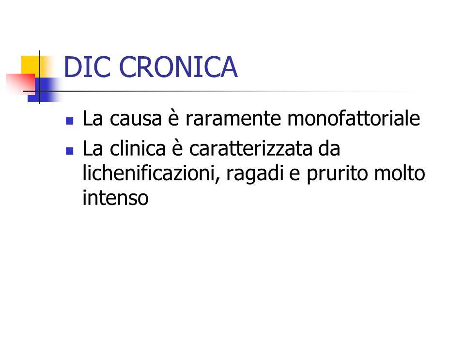 DIC CRONICA La causa è raramente monofattoriale La clinica è caratterizzata da lichenificazioni, ragadi e prurito molto intenso