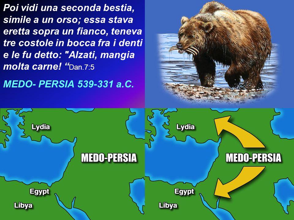 Poi vidi una seconda bestia, simile a un orso; essa stava eretta sopra un fianco, teneva tre costole in bocca fra i denti e le fu detto: