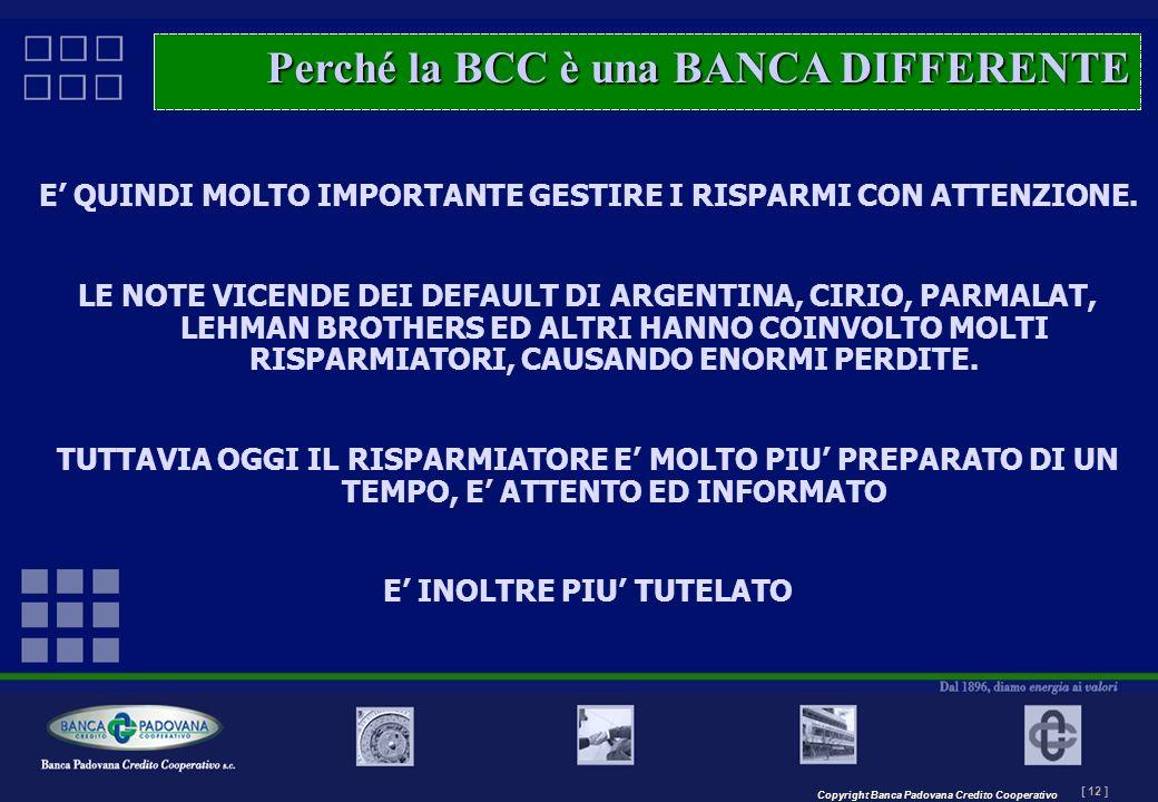 Copyright Banca Padovana Credito Cooperativo [ 12 ] MASTERPLAN – Il progetto E QUINDI MOLTO IMPORTANTE GESTIRE I RISPARMI CON ATTENZIONE. LE NOTE VICE