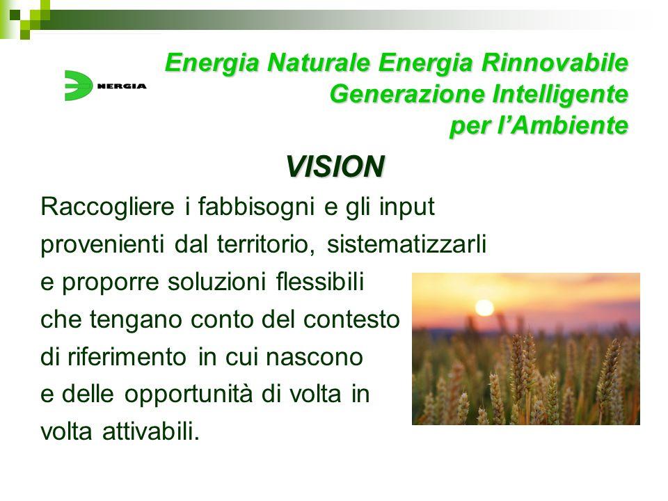Energia Naturale Energia Rinnovabile Generazione Intelligente per lAmbiente VISION Raccogliere i fabbisogni e gli input provenienti dal territorio, si