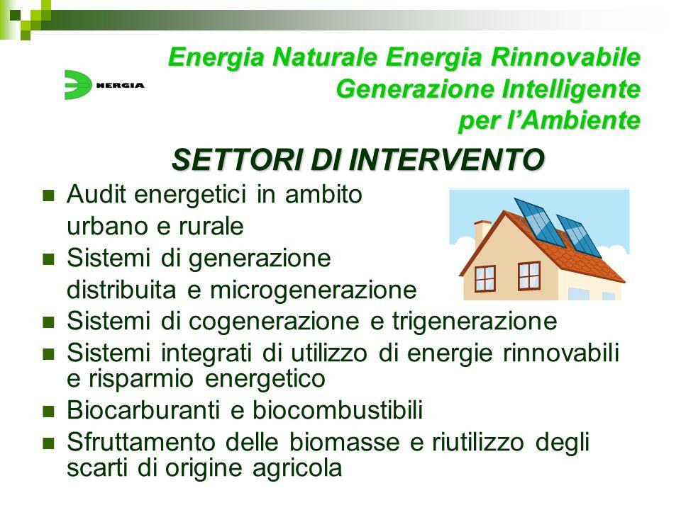 Energia Naturale Energia Rinnovabile Generazione Intelligente per lAmbiente SETTORI DI INTERVENTO SETTORI DI INTERVENTO Audit energetici in ambito urb