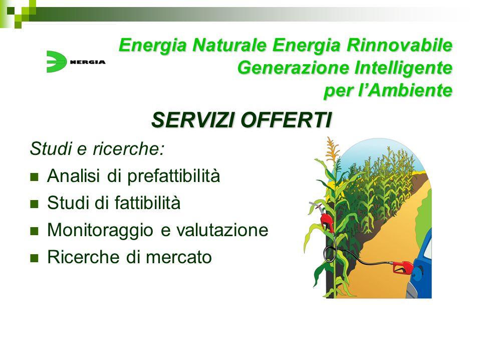 Energia Naturale Energia Rinnovabile Generazione Intelligente per lAmbiente SERVIZI OFFERTI Studi e ricerche: Analisi di prefattibilità Studi di fatti
