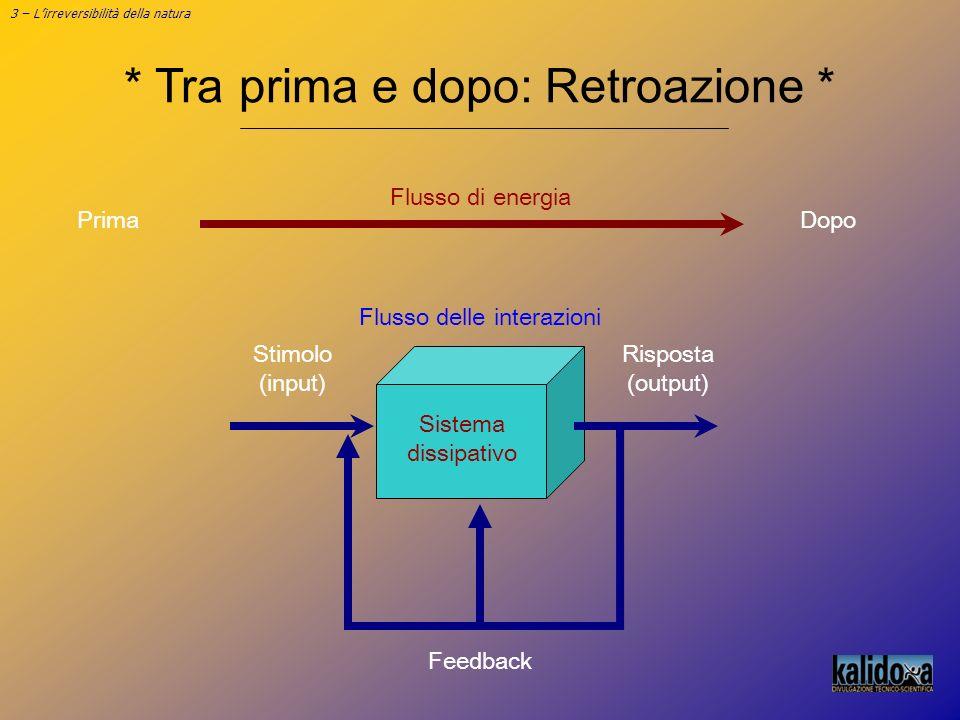 3 – Lirreversibilità della natura * Tra prima e dopo: Retroazione * Stimolo (input) Risposta (output) Feedback Flusso delle interazioni Sistema dissip