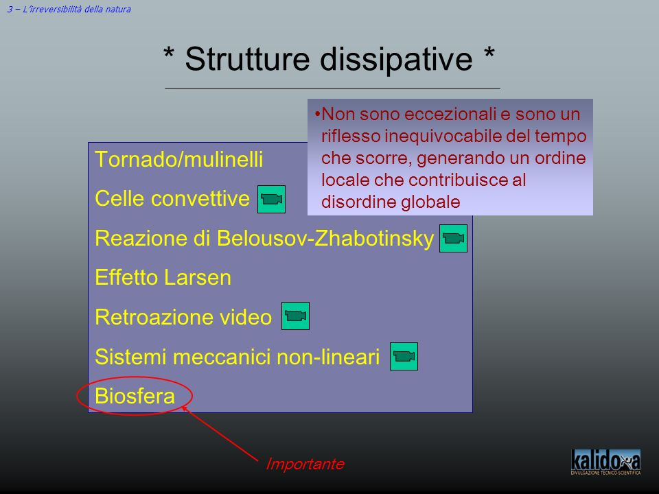 3 – Lirreversibilità della natura * Strutture dissipative * Tornado/mulinelli Celle convettive Reazione di Belousov-Zhabotinsky Effetto Larsen Retroaz