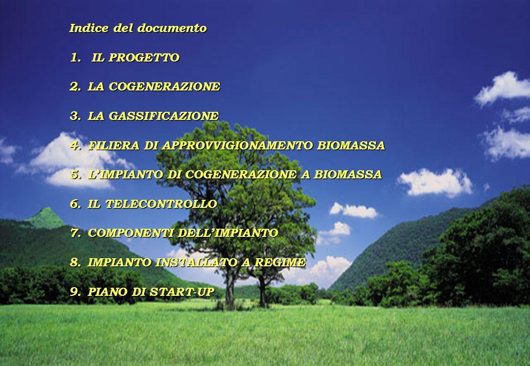 2 Indice del documento 1. IL PROGETTO 2.LA COGENERAZIONE 3.LA GASSIFICAZIONE 4.FILIERA DI APPROVVIGIONAMENTO BIOMASSA 5.LIMPIANTO DI COGENERAZIONE A B
