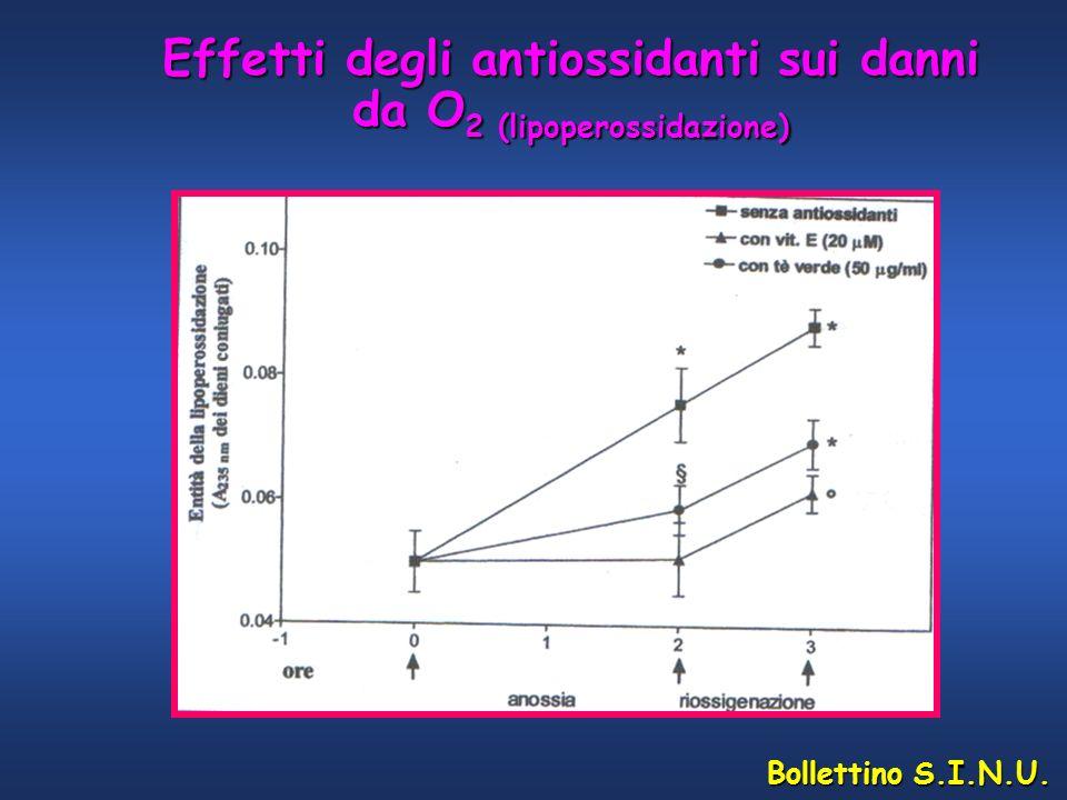 Bollettino S.I.N.U. Effetti degli antiossidanti sui danni da O 2 (lipoperossidazione)