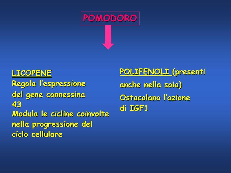 POMODORO LICOPENE Regola lespressione del gene connessina 43 Modula le cicline coinvolte nella progressione del ciclo cellulare POLIFENOLI (presenti a