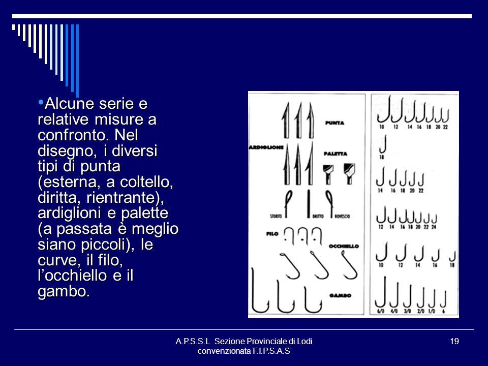 A.P.S.S.L Sezione Provinciale di Lodi convenzionata F.I.P.S.A.S 19 Alcune serie e relative misure a confronto. Nel disegno, i diversi tipi di punta (e