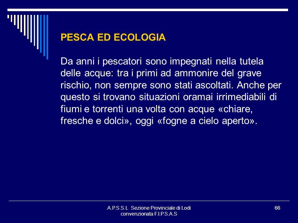 A.P.S.S.L Sezione Provinciale di Lodi convenzionata F.I.P.S.A.S 66 PESCA ED ECOLOGIA Da anni i pescatori sono impegnati nella tutela delle acque: tra