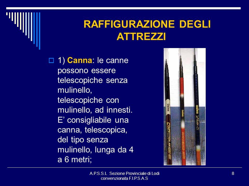A.P.S.S.L Sezione Provinciale di Lodi convenzionata F.I.P.S.A.S 29 SCELTA DEL DIAMETRO DEL MONOFILO I monofili, in base al tipo di pesca che andremo ad effettuare, possono variare da un minimo di 0,06 mm a un massimo di 0,45 mm e oltre.