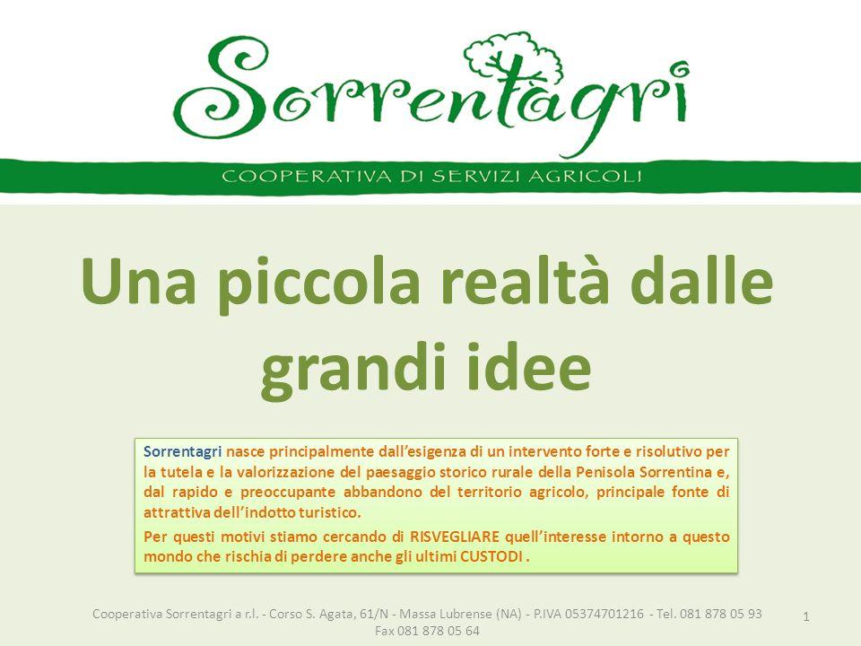 Una piccola realtà dalle grandi idee 1 Cooperativa Sorrentagri a r.l. - Corso S. Agata, 61/N - Massa Lubrense (NA) - P.IVA 05374701216 - Tel. 081 878