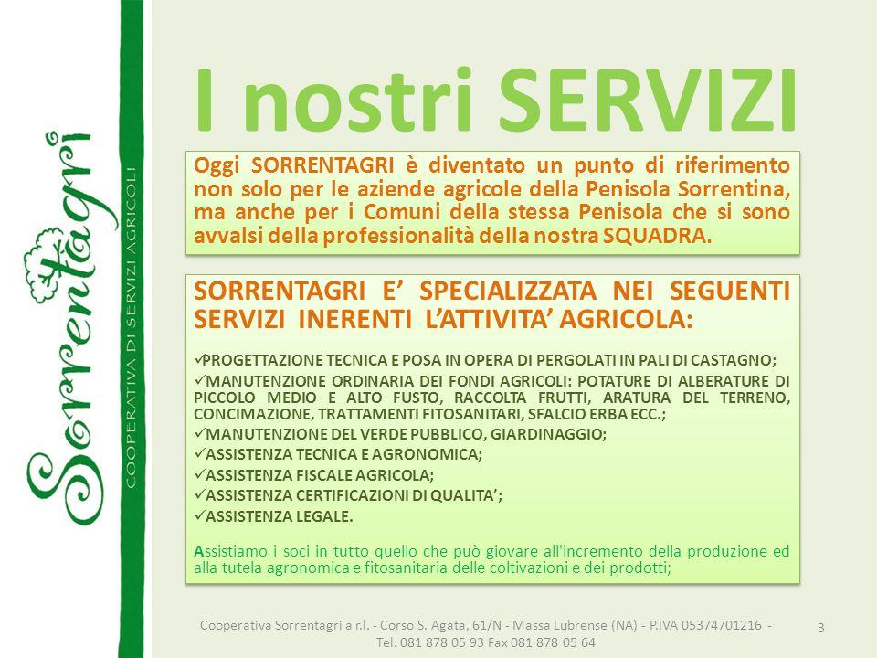 I nostri SERVIZI Oggi SORRENTAGRI è diventato un punto di riferimento non solo per le aziende agricole della Penisola Sorrentina, ma anche per i Comun