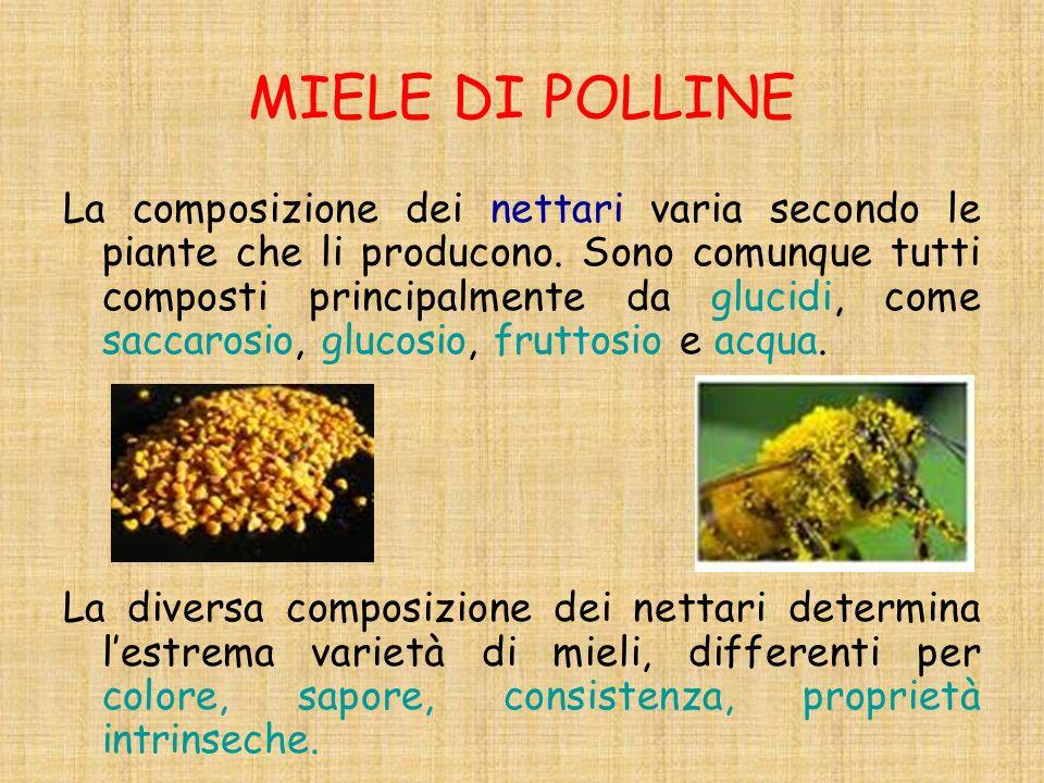 MIELE DI POLLINE La composizione dei nettari varia secondo le piante che li producono. Sono comunque tutti composti principalmente da glucidi, come sa
