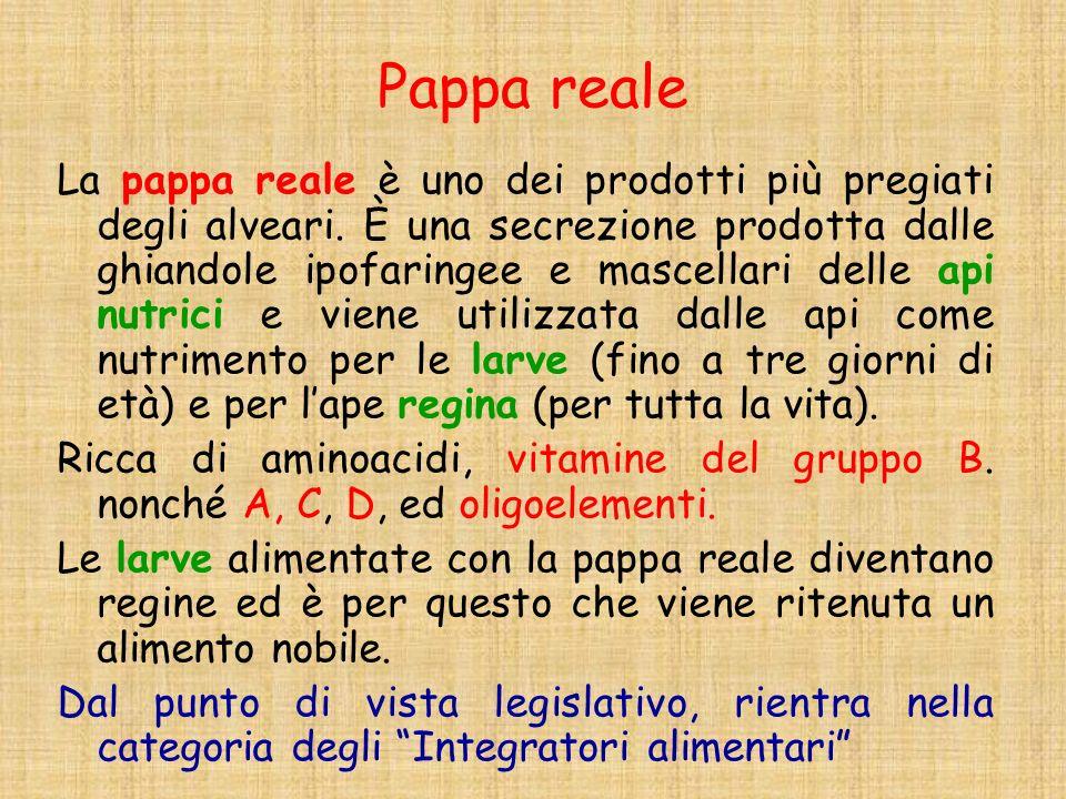 Pappa reale La pappa reale è uno dei prodotti più pregiati degli alveari. È una secrezione prodotta dalle ghiandole ipofaringee e mascellari delle api
