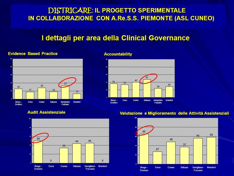 I dettagli per area della Clinical Governance Evidence Based Practice Accountability Audit Assistenziale Valutazione e Miglioramento delle Attività As