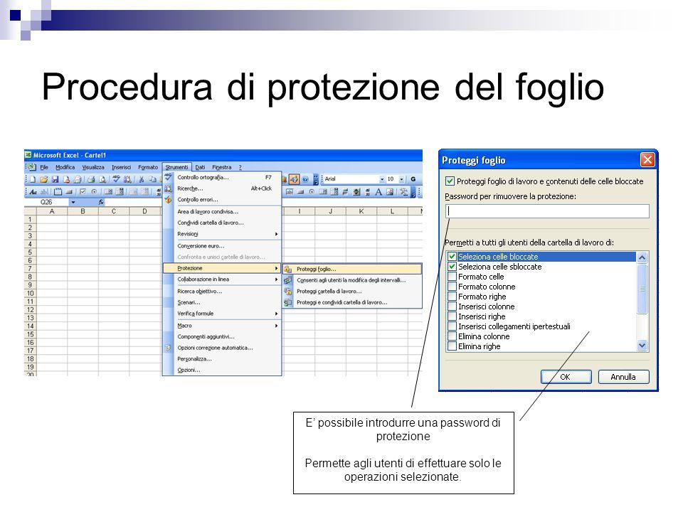 Procedura di protezione del foglio E possibile introdurre una password di protezione Permette agli utenti di effettuare solo le operazioni selezionate