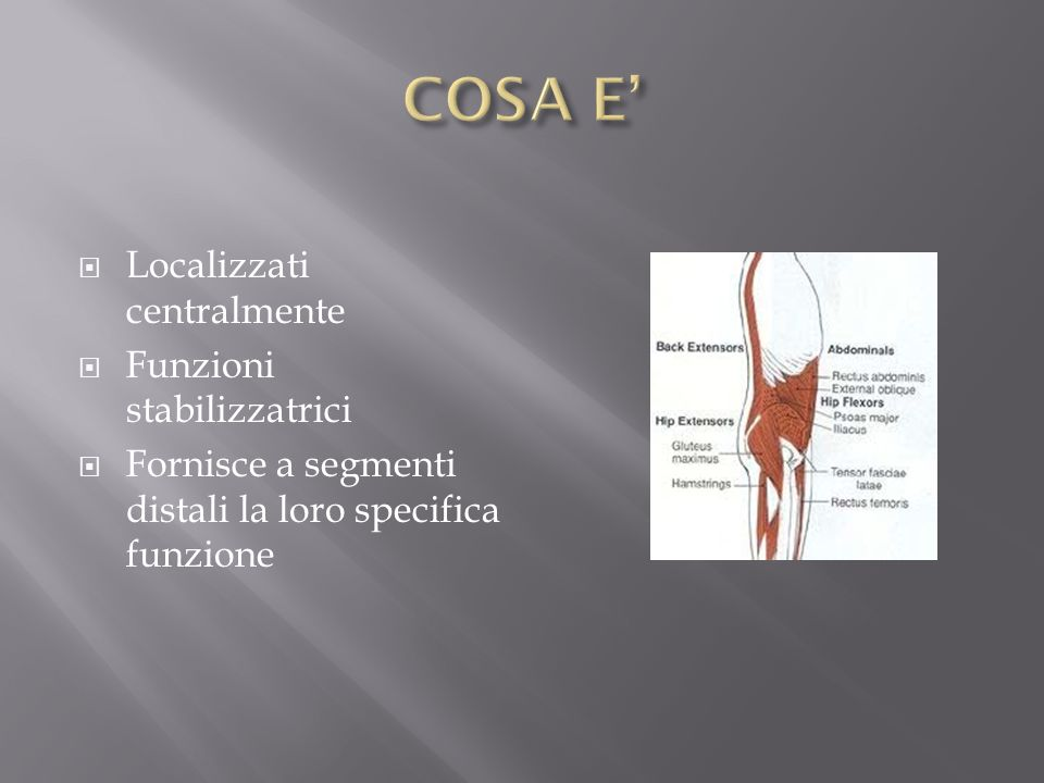 Azione Contrazione Eccentrica controllo flessione e scivolamento anteriore della colonna