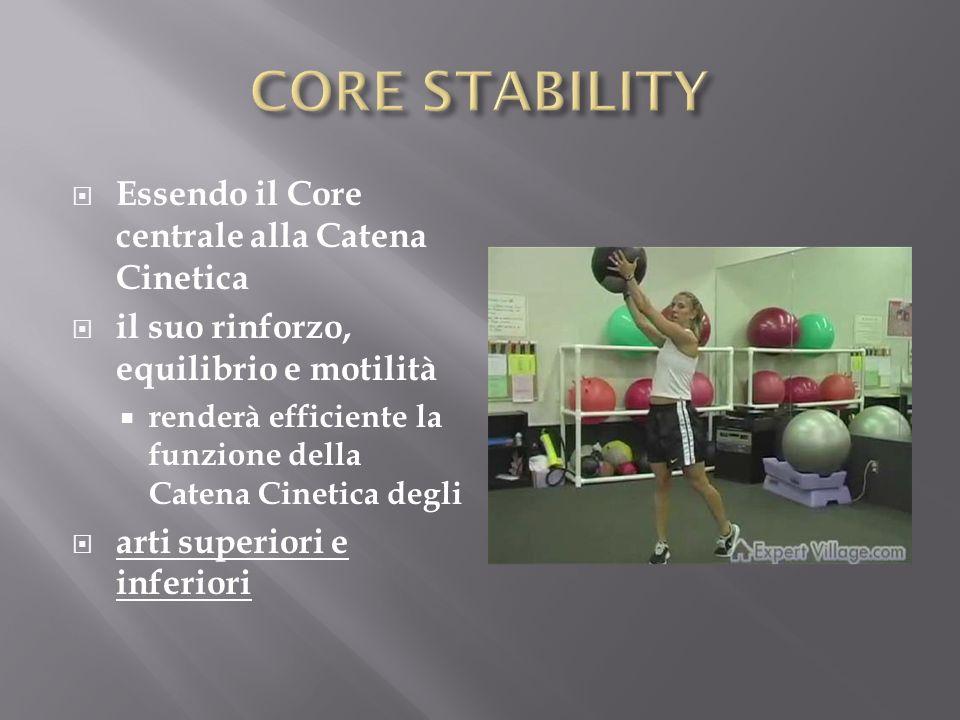 1)Affaticamento muscoli del Core 2)Diminuzione performance in ciclisti professionisti S.Lephart, UPMC, 2005