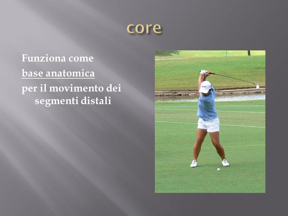 Azione Contrazione: 1) Aumento pressione intraddominale 2) Tensione su fascia Toraco-Lombare