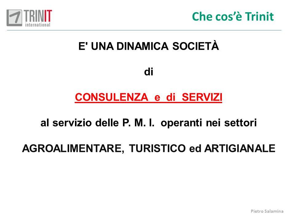 Che cosè Trinit E' UNA DINAMICA SOCIETÀ di CONSULENZA e di SERVIZI al servizio delle P. M. I. operanti nei settori AGROALIMENTARE, TURISTICO ed ARTIGI
