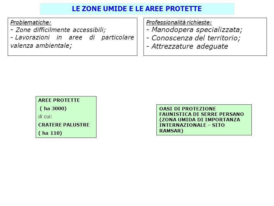 LE ZONE UMIDE E LE AREE PROTETTE Problematiche: - Zone difficilmente accessibili; - Lavorazioni in aree di particolare valenza ambientale ; Profession
