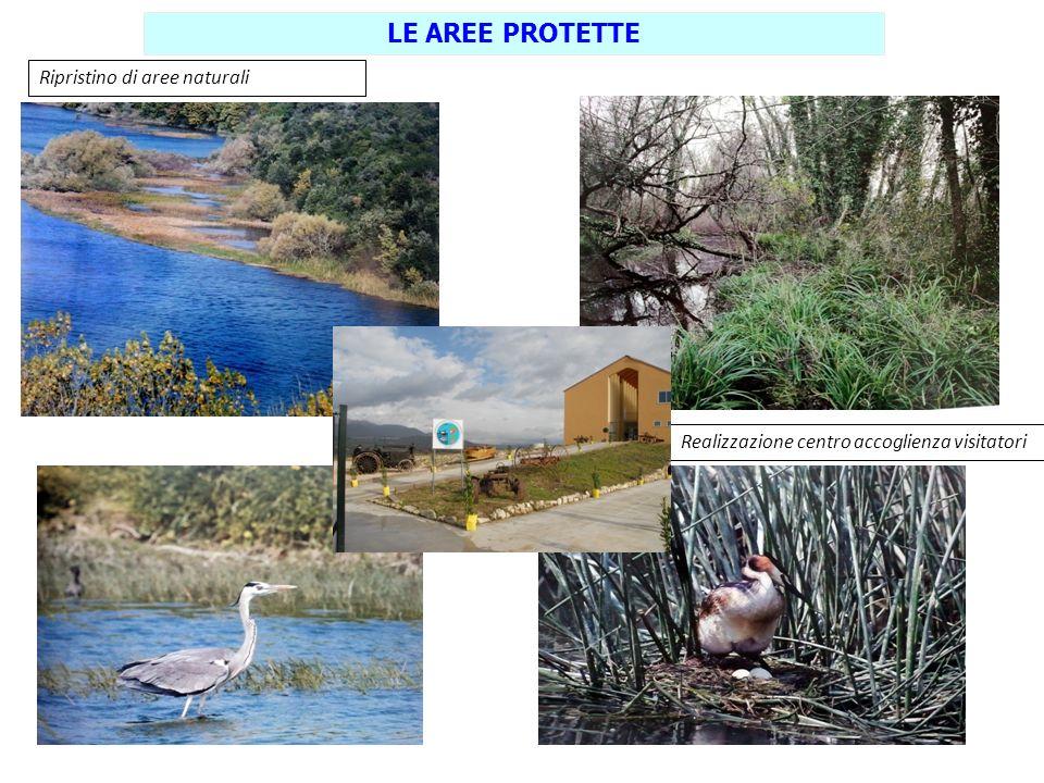 Ripristino di aree naturali LE AREE PROTETTE Realizzazione centro accoglienza visitatori