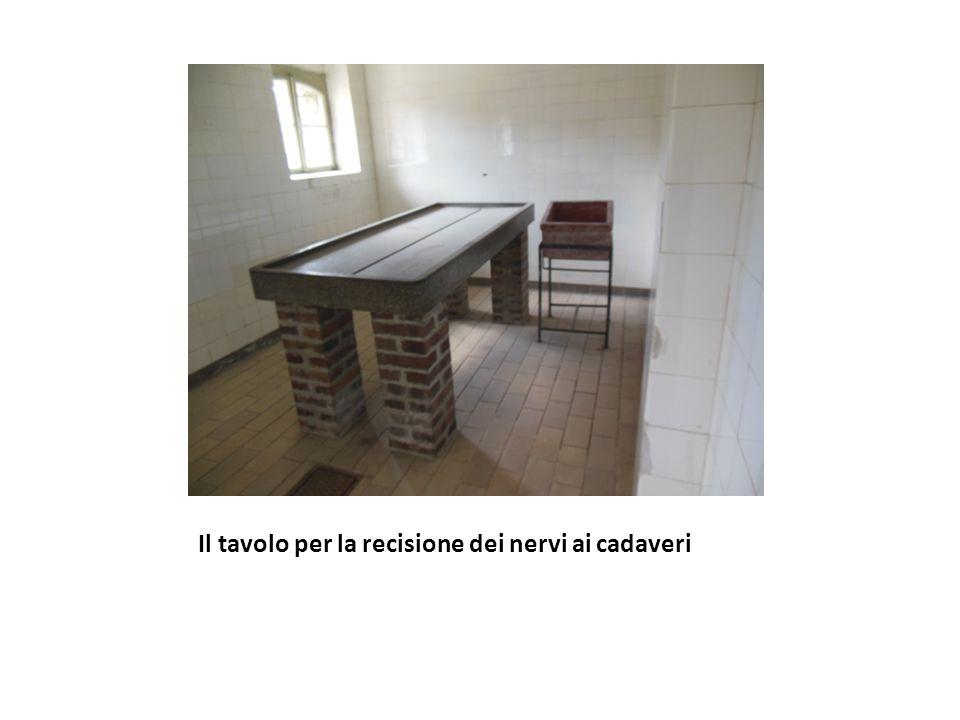 Il tavolo per la recisione dei nervi ai cadaveri