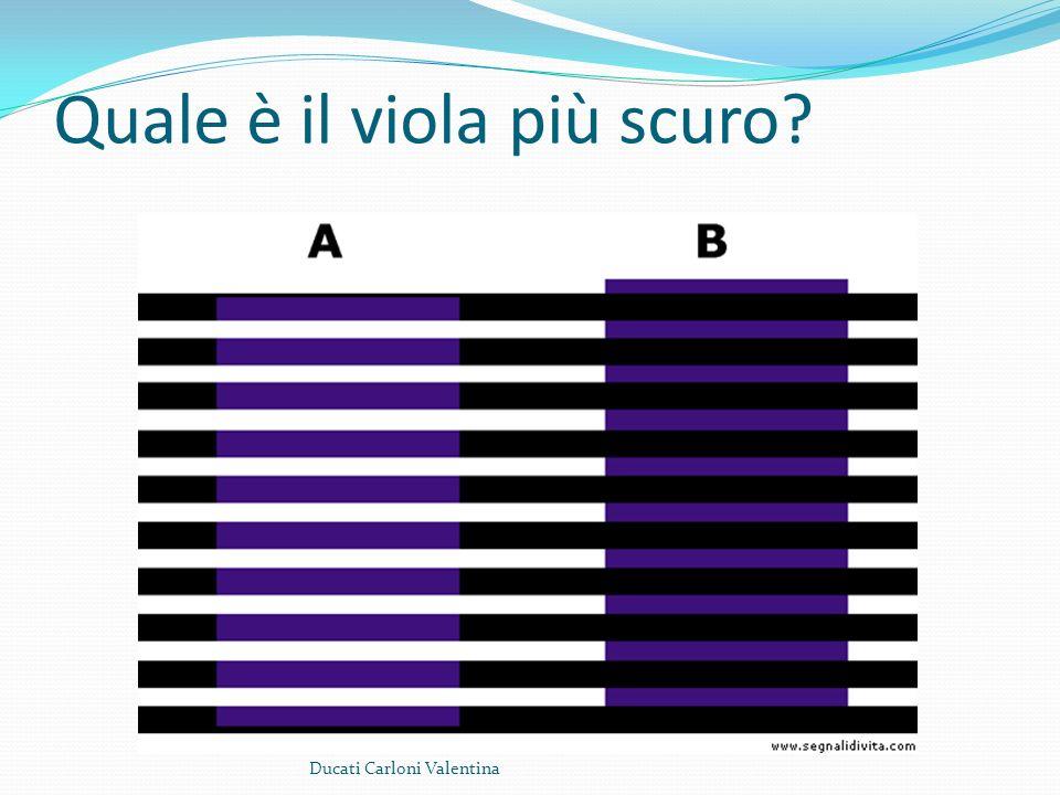 Quale è il viola più scuro? Ducati Carloni Valentina