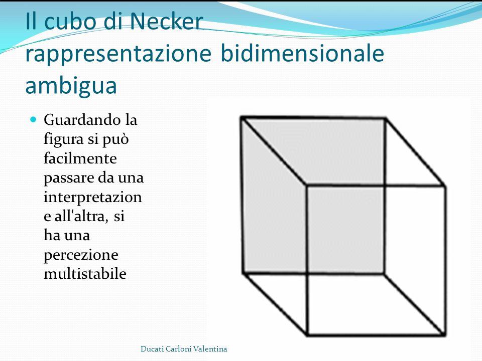 Il cubo di Necker rappresentazione bidimensionale ambigua Guardando la figura si può facilmente passare da una interpretazion e all'altra, si ha una p