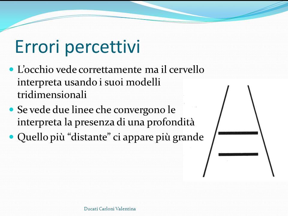 Errori percettivi Locchio vede correttamente ma il cervello interpreta usando i suoi modelli tridimensionali Se vede due linee che convergono le inter